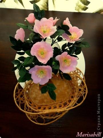 У меня появился вот такой букет из цветущих веток шиповника. фото 7
