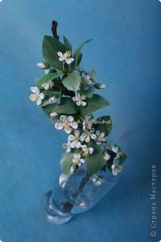 Доброго всем времени суток! наконец-то появилось на небе долгожданное теплое солнышко, местами уже можно порадоваться первым цветочкам мать-и-мачехи. Но в этом году ожидание прихода весны было столь длительным, что захотелось ощутить весеннее цветение как можно скорее. Так и родились две эти работы в технике квиллинга: цветущая яблонька (подроный мк в журнале Diana Креатив, май 2012) и липовая веточка, которыми я и хочу с вами поделиться. фото 3