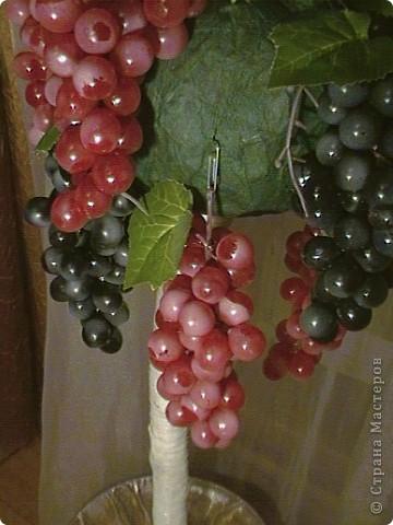 Топиарий- типо виноградное дерево, правда такого не бывает, а у меня дома вот выросло. Идея созрела давно, да и гроздья винограда лежали, да все не доходили руки, а тут у мастерицы увидела, что из таких же веточек сделано дерево, вот и решила тоже вырастить такое дерево. https://stranamasterov.ru/node/351148?c=favorite фото 5
