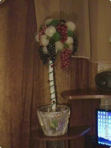 Топиарий- типо виноградное дерево, правда такого не бывает, а у меня дома вот выросло. Идея созрела давно, да и гроздья винограда лежали, да все не доходили руки, а тут у мастерицы увидела, что из таких же веточек сделано дерево, вот и решила тоже вырастить такое дерево. https://stranamasterov.ru/node/351148?c=favorite фото 16