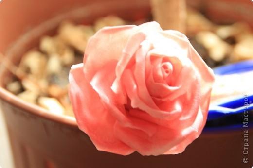 Вот, сделала наконец-то розы в живую величину, я имею ввиду сам бутон, .... стебель пока не обкатала, некогда, листики тоже в процессе, но потом добавлю, что в результате получилось. Дальше разные ракурсы и судить вам))) фото 1