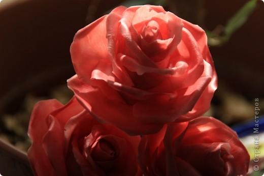 Вот, сделала наконец-то розы в живую величину, я имею ввиду сам бутон, .... стебель пока не обкатала, некогда, листики тоже в процессе, но потом добавлю, что в результате получилось. Дальше разные ракурсы и судить вам))) фото 5