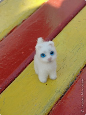 Маленький котенок Сева)))) фото 5