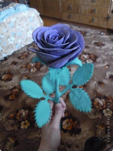 Роза на День Рождения  фото 3