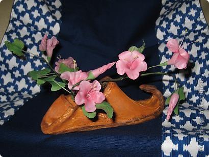 вьюнок пророс в туфле забытым в саду фото 1