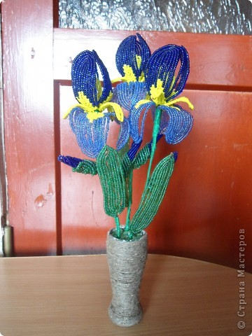 орхидея фото 9