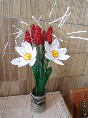 орхидея фото 42