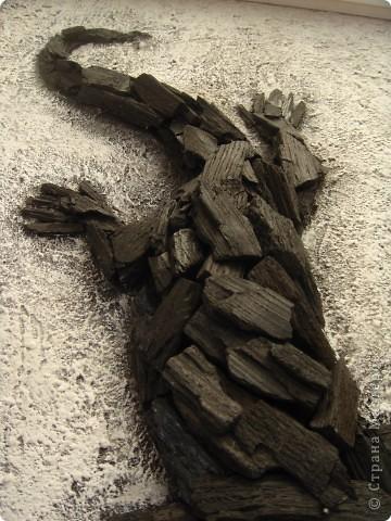 Угольная ящерица фото 4