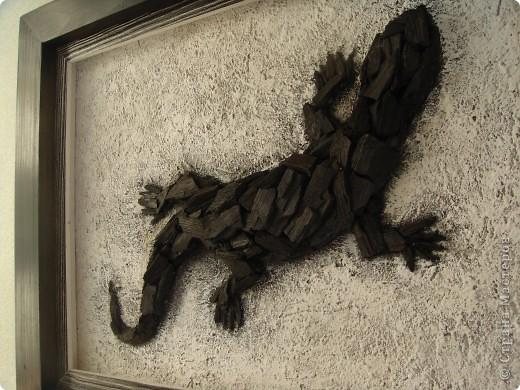Угольная ящерица фото 2
