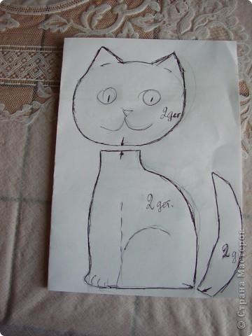 Всем  привет,  я  кот  ВАСЬКА фото 15