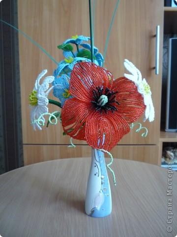 орхидея фото 34