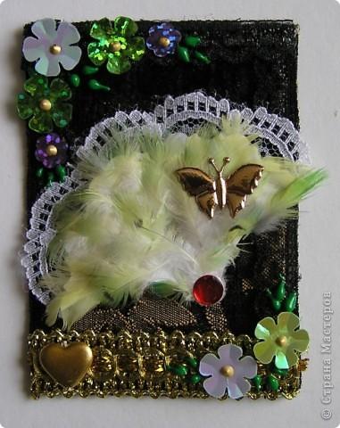 Долго.Очень  долго  не  могла  придумать  как  бы  я  могла   использовать перья  попугая   в АТС карточке. Но   я   это  всетаки сделала. А  как...Судить вам! фото 3