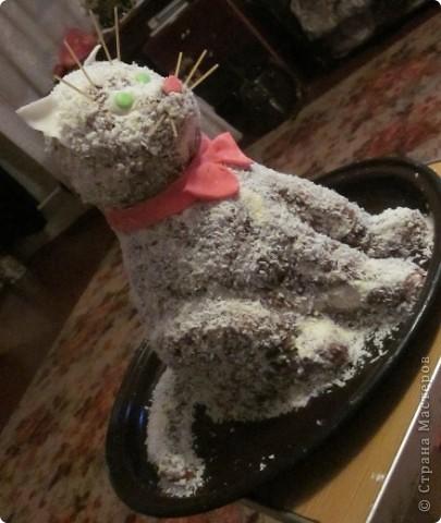 Добрый Вечер мастера и мастерицы.Решилась выложить свои тортики.Извиняюсь за качество некоторых фото(успела сделать только на телефон).Не судите строго. Котик. фото 1