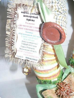 """Авторская кукла """"ДО ЧЕГО ЖЕ УМНЫЙ ЭТОТ ГНОМИК ГОША!""""(Скульптурный текстиль) фото 8"""