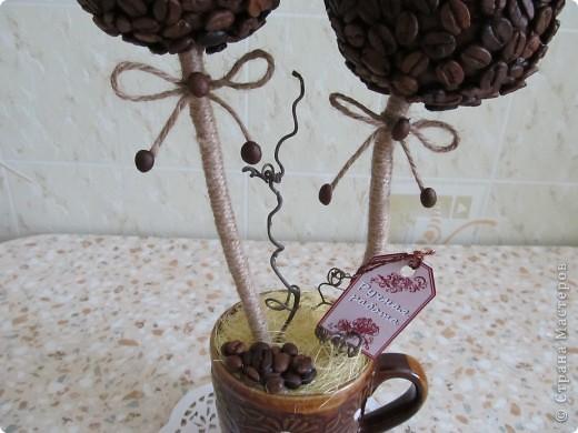 Вот решила сделать очередное кофейное дерево, которое отправится к мужу на работу. фото 3