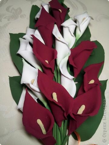 Калы мой любимый цветок. Не смотря на его простоту он прекрасен.   ЭТО МОЯ МЕЧТА!! Я ЕЁ СДЕЛАЛА!!!!!!!!!!!!! фото 1