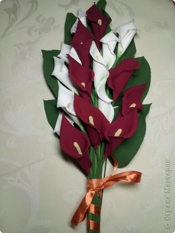 Калы мой любимый цветок. Не смотря на его простоту он прекрасен.   ЭТО МОЯ МЕЧТА!! Я ЕЁ СДЕЛАЛА!!!!!!!!!!!!! фото 2