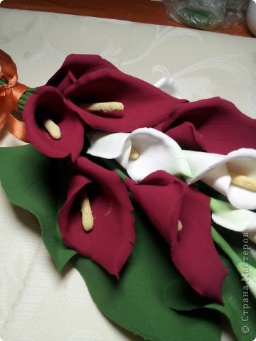 Калы мой любимый цветок. Не смотря на его простоту он прекрасен.   ЭТО МОЯ МЕЧТА!! Я ЕЁ СДЕЛАЛА!!!!!!!!!!!!! фото 3
