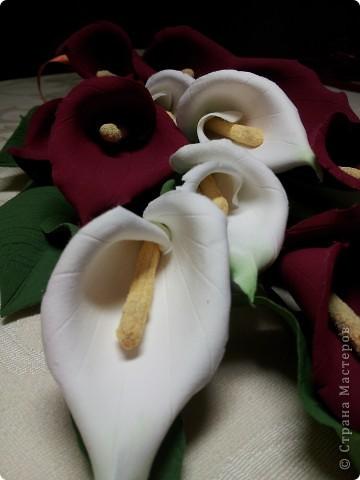 Калы мой любимый цветок. Не смотря на его простоту он прекрасен.   ЭТО МОЯ МЕЧТА!! Я ЕЁ СДЕЛАЛА!!!!!!!!!!!!! фото 7