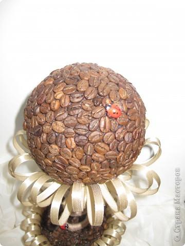 Доброе время суток, всем жителям прекрасной СМ. Я к вам с топиарием в виде кофейного цветочка!!! фото 3