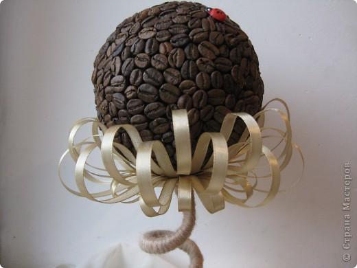 Доброе время суток, всем жителям прекрасной СМ. Я к вам с топиарием в виде кофейного цветочка!!! фото 4