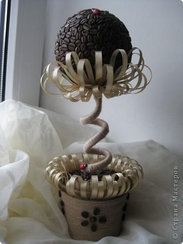 Доброе время суток, всем жителям прекрасной СМ. Я к вам с топиарием в виде кофейного цветочка!!! фото 10
