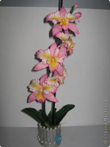 Орхидейка (ещё одна попытка слепить её) фото 1