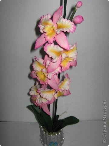 Орхидейка (ещё одна попытка слепить её) фото 2
