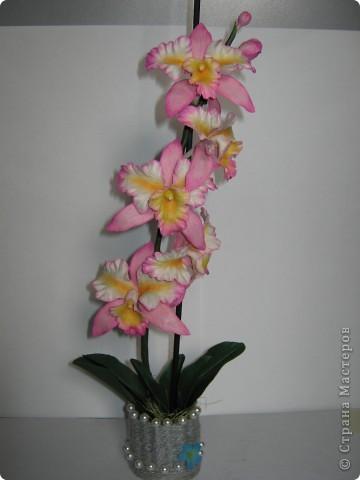 Орхидейка (ещё одна попытка слепить её) фото 4