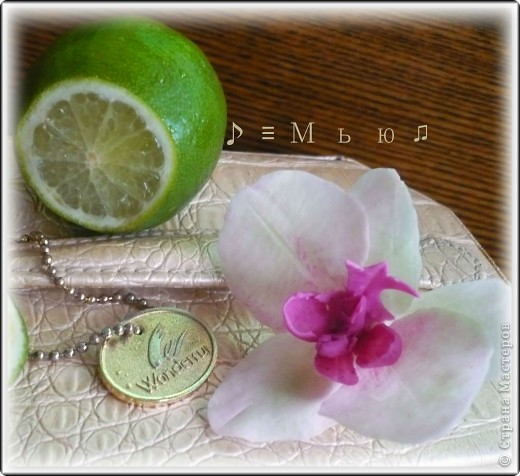 Все жду не дождусь появления молдов, но охота пуще неволи, как говорится, пока вот такая гибридная орхидея вышла... фото 3
