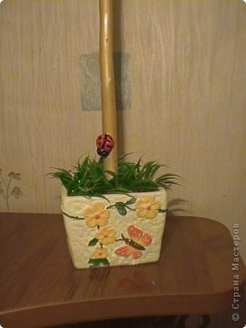 Ромашковое дерево фото 3