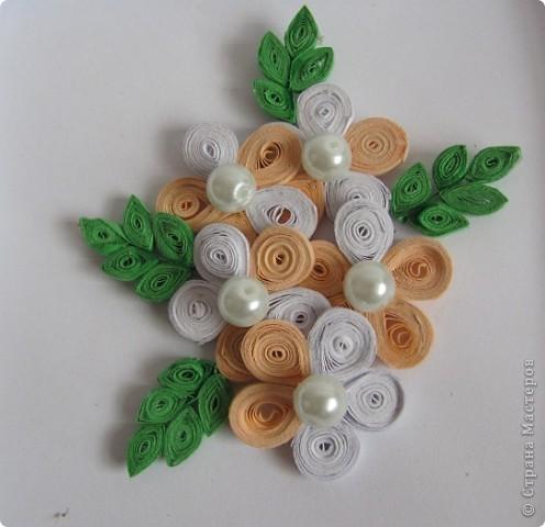 Просто цветы. фото 1