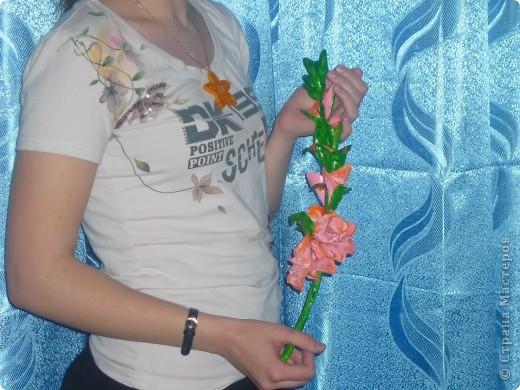 Мой гладиолус фото 1
