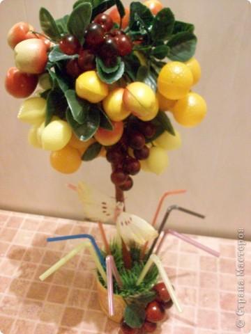 Это уже второе фруктовое дерево, первое забыла сфоткать и подарила))) фото 2