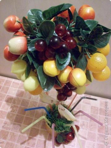 Это уже второе фруктовое дерево, первое забыла сфоткать и подарила))) фото 4
