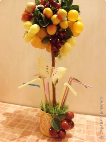 Это уже второе фруктовое дерево, первое забыла сфоткать и подарила))) фото 1