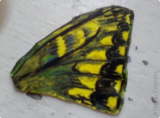 Бабочка из термопластика фото 3