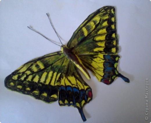 Бабочка из термопластика фото 1