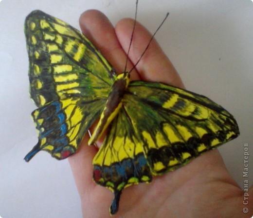 Бабочка из термопластика фото 2