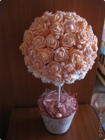Еще раз розовое дерево