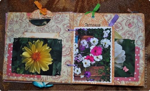 Альбом делала для мамы, она у меня знатный садовод. Участвовала с этим альбомом в конкурсе. Это моя первая проба мягкой обложки... фото 5