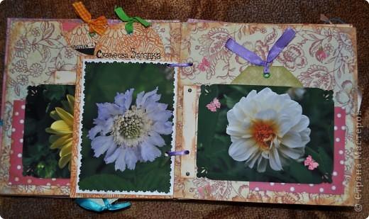Альбом делала для мамы, она у меня знатный садовод. Участвовала с этим альбомом в конкурсе. Это моя первая проба мягкой обложки... фото 6