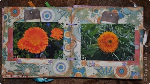 Альбом делала для мамы, она у меня знатный садовод. Участвовала с этим альбомом в конкурсе. Это моя первая проба мягкой обложки... фото 8
