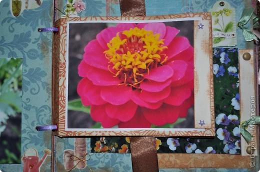 Альбом делала для мамы, она у меня знатный садовод. Участвовала с этим альбомом в конкурсе. Это моя первая проба мягкой обложки... фото 12