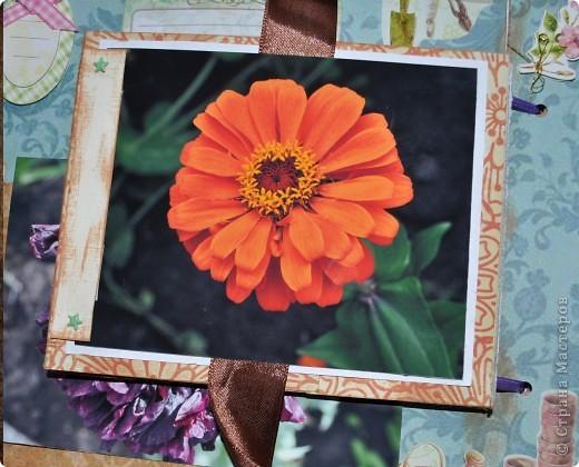 Альбом делала для мамы, она у меня знатный садовод. Участвовала с этим альбомом в конкурсе. Это моя первая проба мягкой обложки... фото 15
