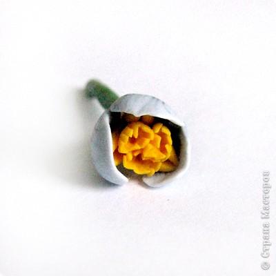 Дорогие жители СМ, поздравляю Всех с праздником! У нас в мае цветут крокусы, такие красивые и нежные... Вот и захотелось сделать украшение с ними. фото 11