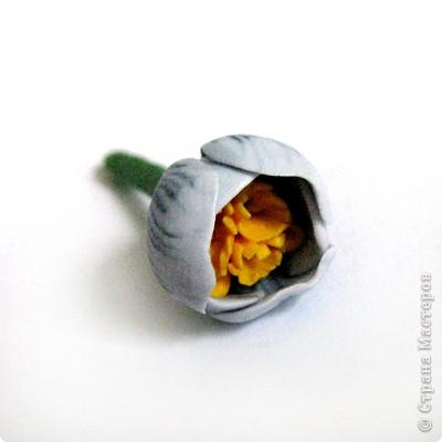 Дорогие жители СМ, поздравляю Всех с праздником! У нас в мае цветут крокусы, такие красивые и нежные... Вот и захотелось сделать украшение с ними. фото 12