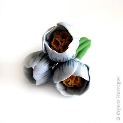 Дорогие жители СМ, поздравляю Всех с праздником! У нас в мае цветут крокусы, такие красивые и нежные... Вот и захотелось сделать украшение с ними. фото 13