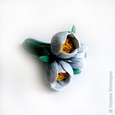 Дорогие жители СМ, поздравляю Всех с праздником! У нас в мае цветут крокусы, такие красивые и нежные... Вот и захотелось сделать украшение с ними. фото 15
