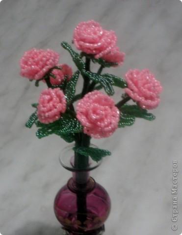 Розовый кустик